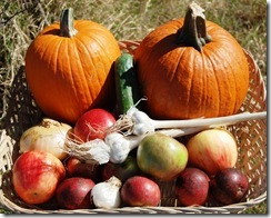 072LR Produce Harvest
