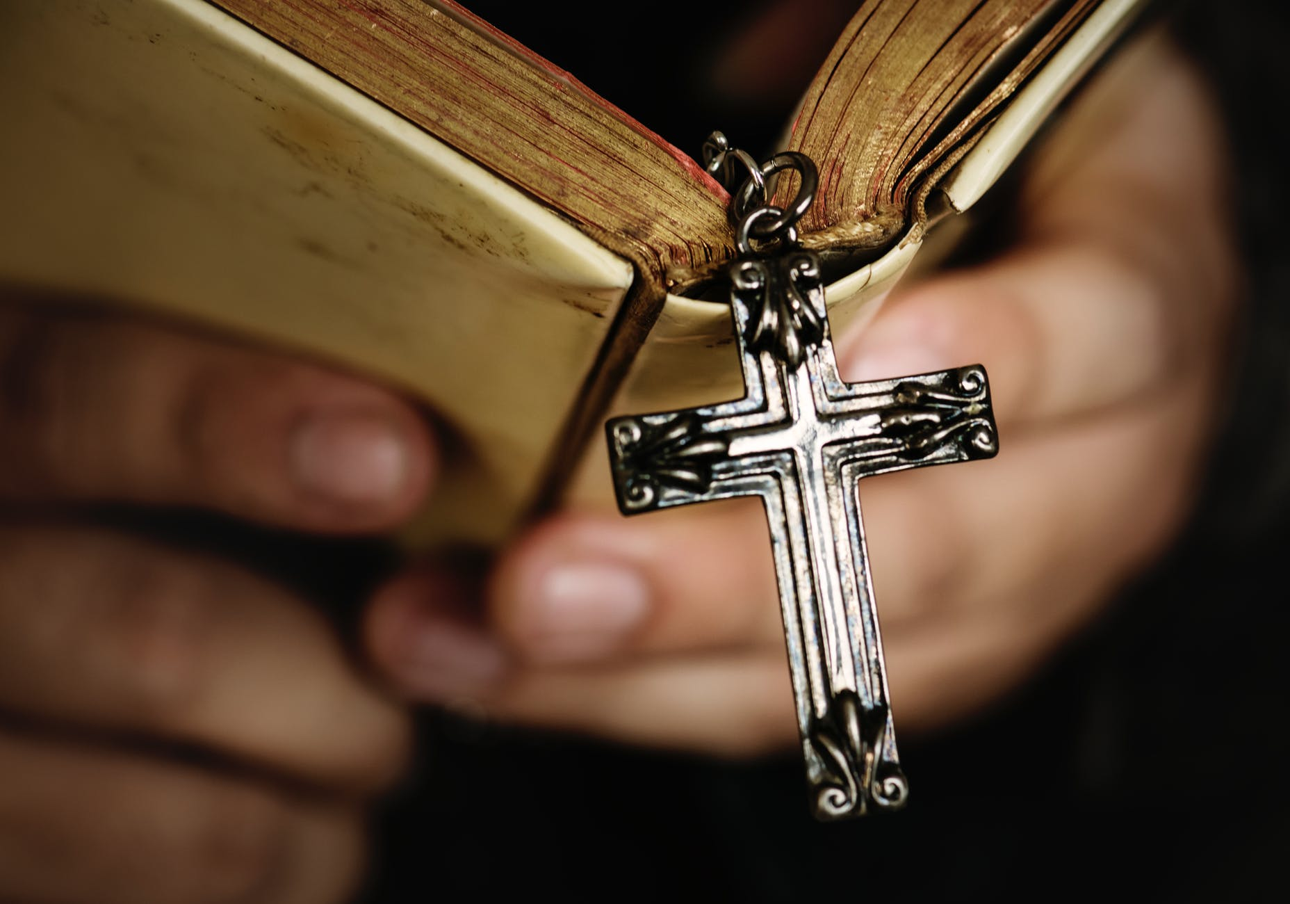 person holding bible with cross
