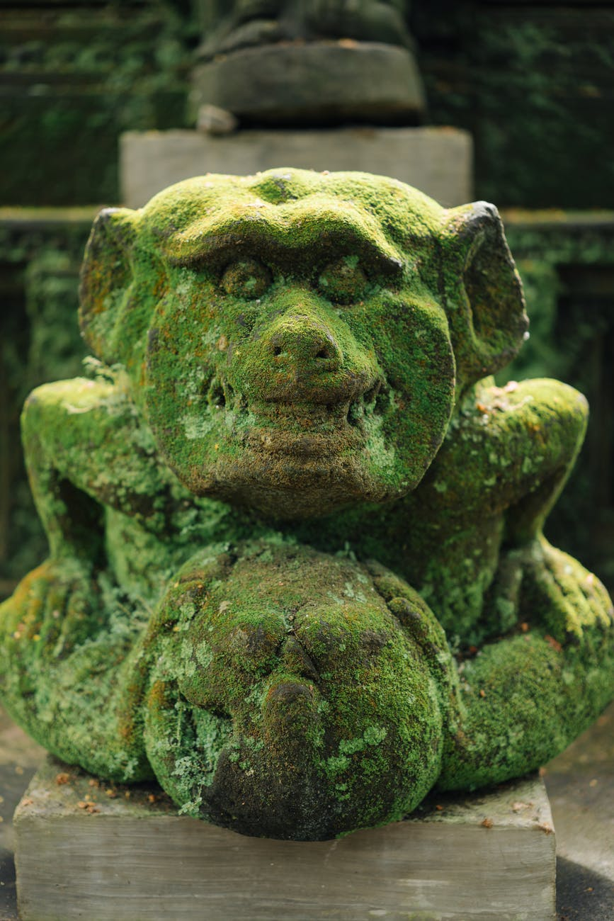 stone mythical creature statue in jungle